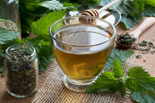Foreverfit- A Cup Of Nettle Tea With Fresh And Dry Nettles
