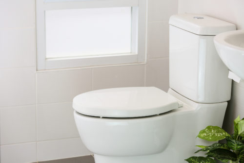 Foreverfit- Seating Toilet
